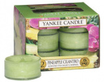 Yankee Candle - Tealight Pineapple Cilantro