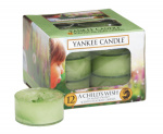 Yankee Candle - Tealight A Child's Wish