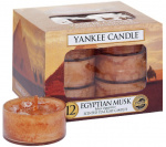 Yankee Candle - Tealight Egyptian Musk