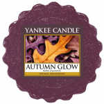 Yankee Candle - Wosk Autumn Glow - 22g