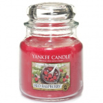 Yankee Candle – Mały słoik Red Raspberry – 104g