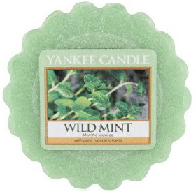 Yankee Candle - Wosk Wild Mint - 22g