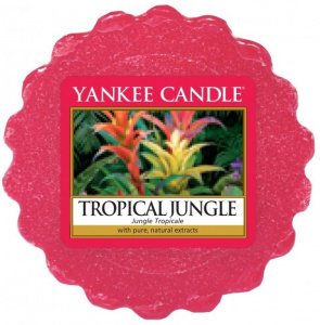 Yankee Candle - Wosk Tropical Jungle - 22g
