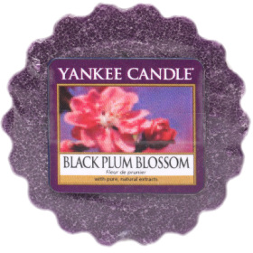 Yankee Candle - Wosk Black Plum Blossom - 22g